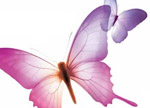 Indesign butterflys